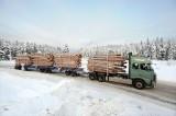 Prodloužená souprava pro svážení dřeva od VOLVA