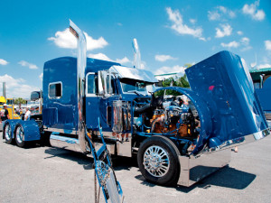 showtruckers33